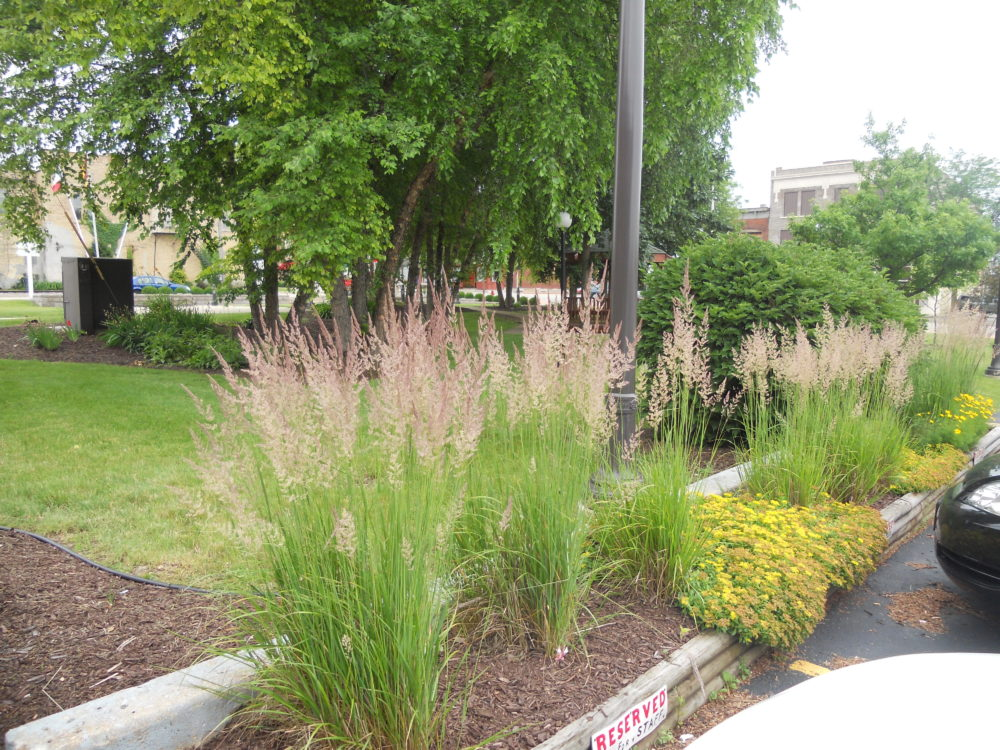 commercial-landscaping-rockford-machesney-park-il-18 - Landscape Design Gallery - Foss Landscapes
